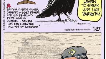 A British cheese maker offered a $652 reward for his 88-pound prize-winning cheese - stolen not far from the village of Cheddar!-------------------- Ravens in captivity can learn to speak just like parrots!-------------------- Breathing the air in New Delhi is the equivalent of smoking 45 cigarettes a day.