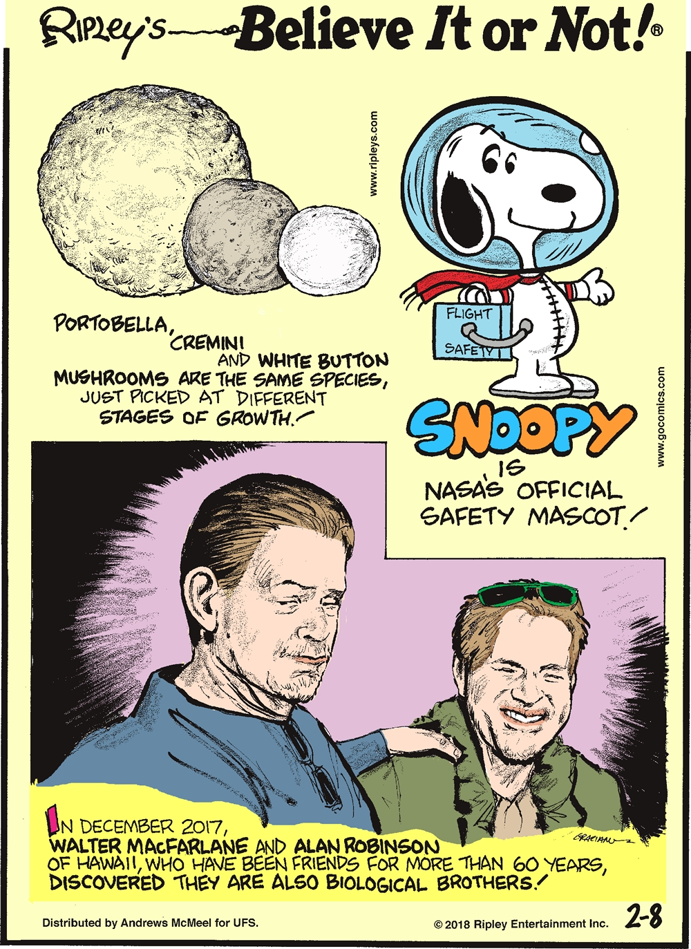Portobella, cremini and white button mushrooms are the same species, just picked at different stages of growth!-------------------- Snoopy is NASA's official safety mascot!-------------------- In December 2017, Walter MacFarlane and Alan Robinson of Hawaii, who have been friends for more than 60 years, discovered they are also biological brothers!