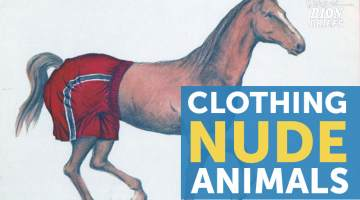 clothe nude animals