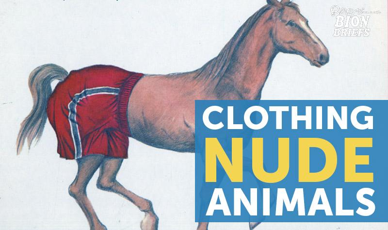 clothe nude animals