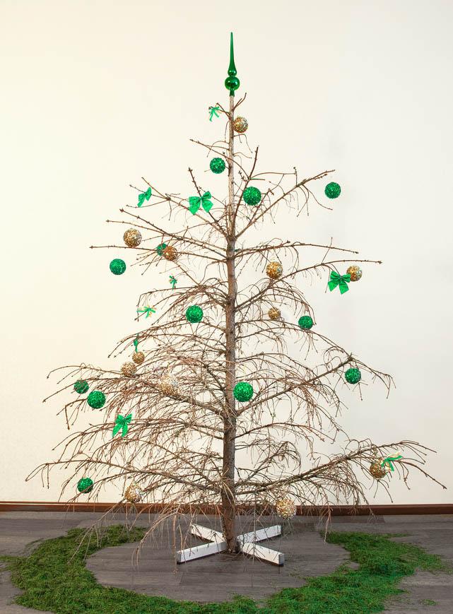 dry christmas tree