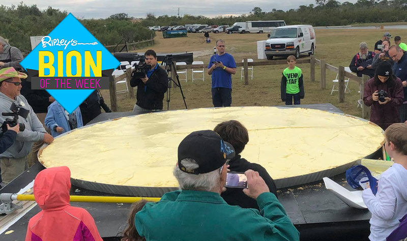 largest key lime pie