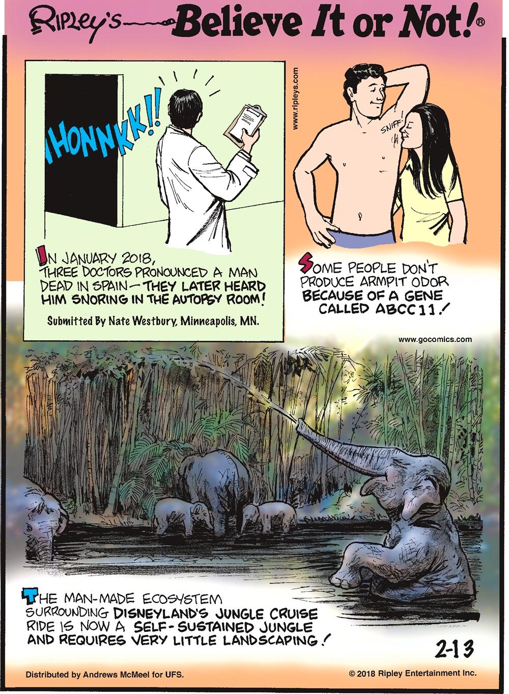 Cartoon 02 13 2018 Ripley S Believe It Or Not