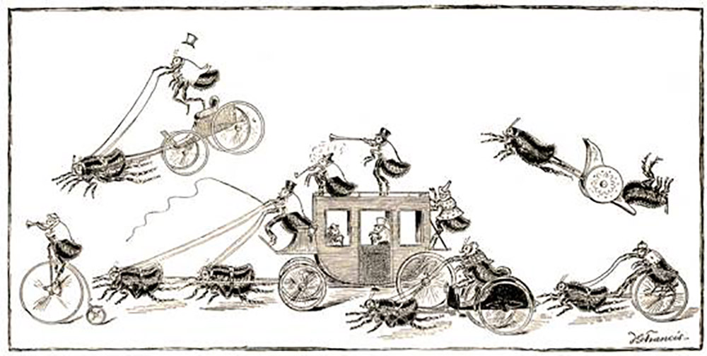 flea race