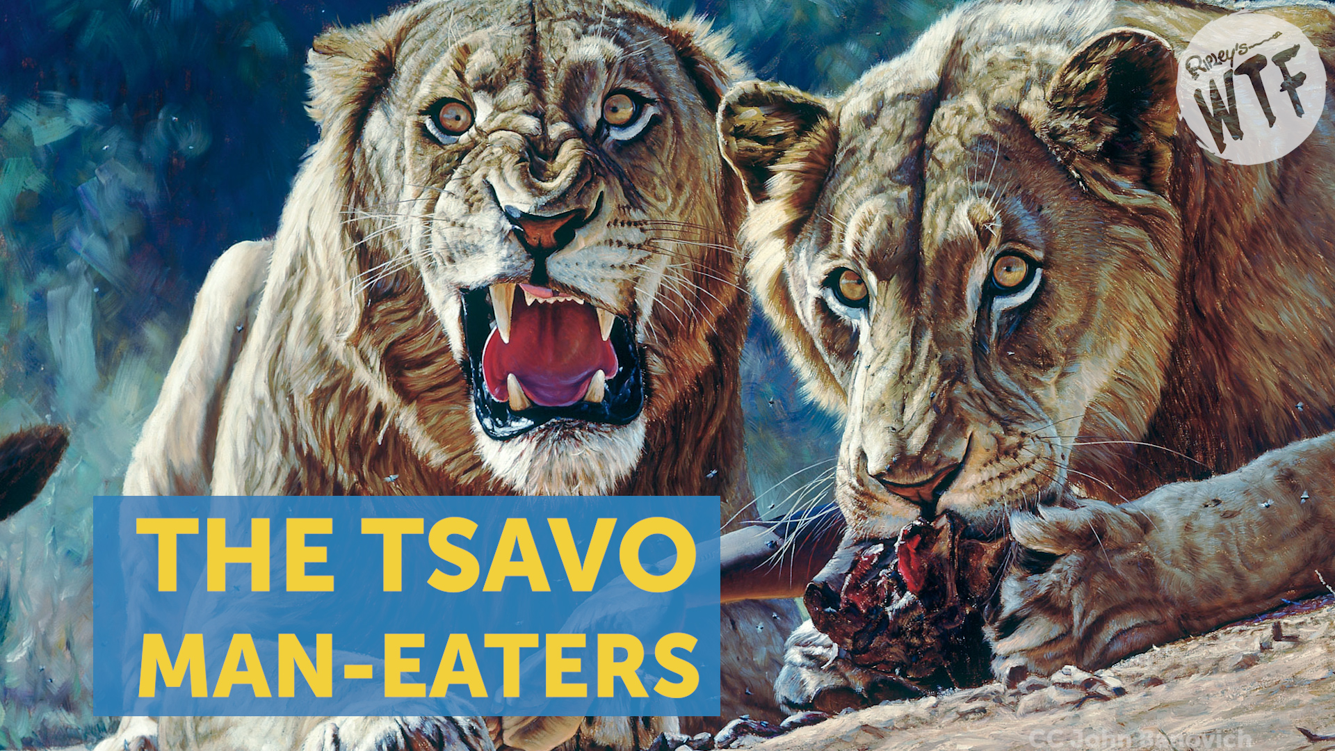 The Savage Tsavo Man-Eaters And The Man Who Stopped Them