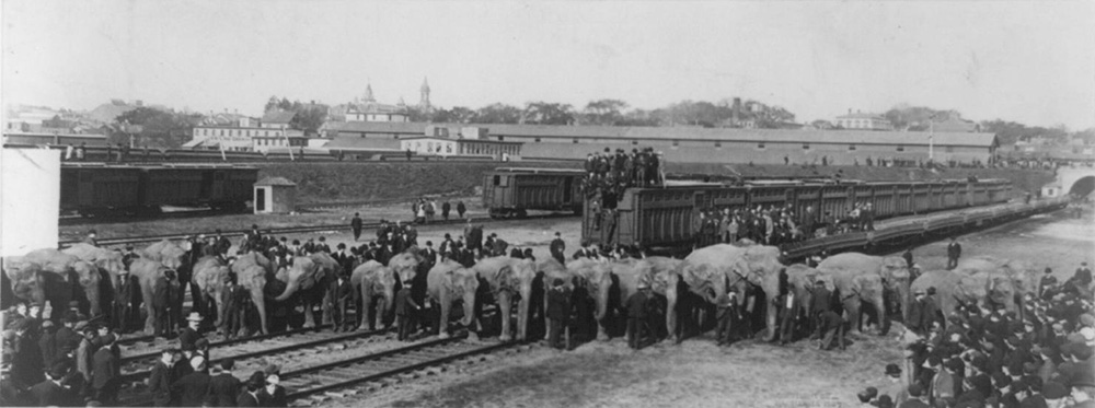 ringling and barnum circus train