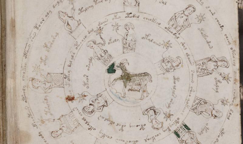 voynich manuscripts