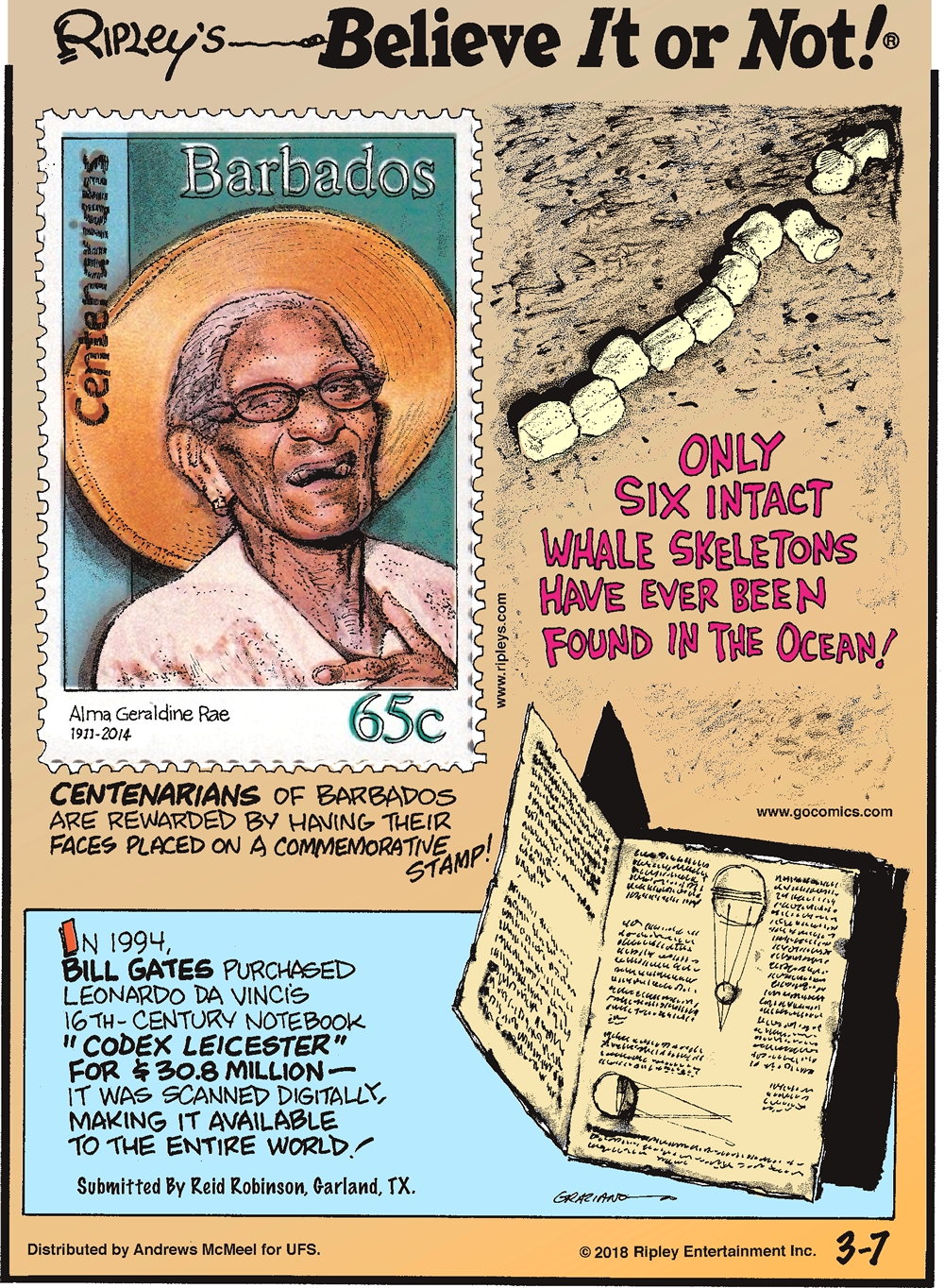 """Centenarians of Barbados are rewarded by having their faces placed on a commemorative stamp!-------------------- Only six intact whale skeletons have ever been found in the ocean!-------------------- In 1994, Bill Gates purchased Leonardo Da Vinci's 16th-century notebook """"Codex Leicester"""" for $30.8 million - it was scanned digitally, making it available to the entire world! Submitted by Reid Robinson, Garland, TX."""