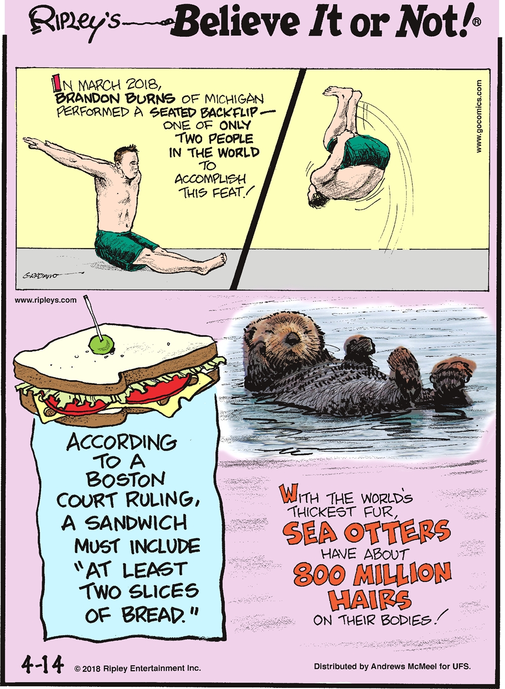 """In March 2018, Brandon Burns of Michigan performed a seated backflip - one of only two people in the world to accomplish this feat!-------------------- According to a Boston court ruling, a sandwich must include """"at least two slices of bread.""""-------------------- With the world's thickest fur, sea otters have about 800 million hairs on their bodies!"""