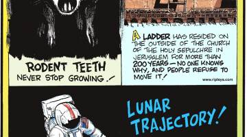 Rodent teeth never stop growing!-------------------- A ladder has resided on the outside of the Church of the Holy Sepulchre in Jerusalem for more than 200 years - no one knows why, and people refuse to move it!-------------------- There are two golf balls on the moon!