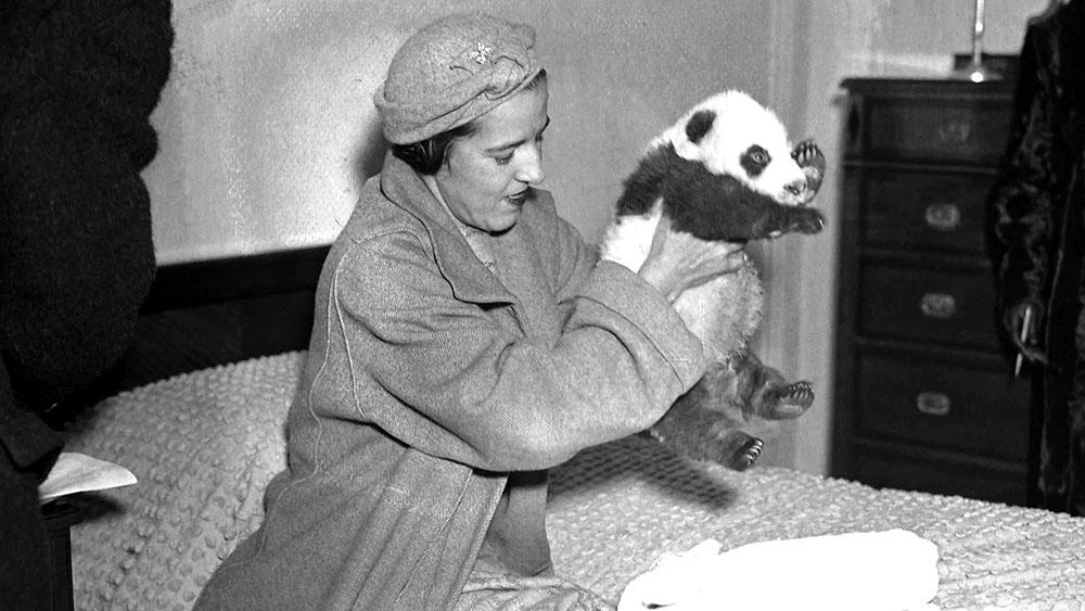ruth harkness panda