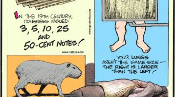 In the 19th century, Congress issued 3, 5, 10, 25 and 50-cent notes!-------------------- Your lungs aren't the same size - the right is larger than the left!-------------------- The world's heaviest snake, the anaconda, dines on the world's heaviest rodent, the capybara.