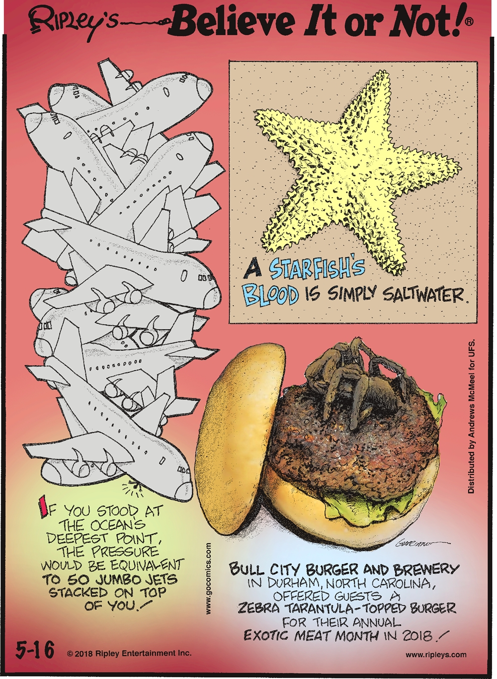 If you stood at the ocean's deepest point, the pressure would be equivalent to 50 jumbo jets stacked on top of you!-------------------- A starfish's blood is simply saltwater.-------------------- Bull City Burger and Brewery in Durham, North Carolina, offered guests a zebra tarantula-topped burger for their annual exotic meat month in 2018!