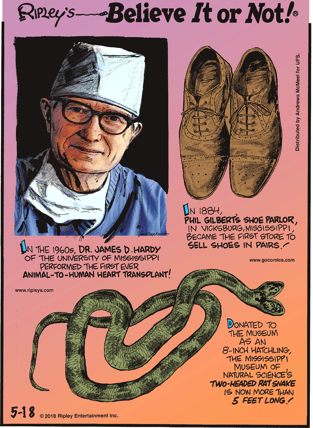 In the 1960s, Dr. James D. Hardy of the University of Mississippi performed the first ever animal-to-human heart transplant!-------------------- In 1884, Phil Gilbert's Shoe Parlor, in Vicksburg, Mississippi became the first store to sell shoes in pairs!-------------------- Donated to the museum as an 8-inch hatchling, the Mississippi Museum of Natural Science's two-headed rat snake is now more than 5 feet long!