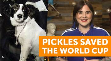 pickles world cup