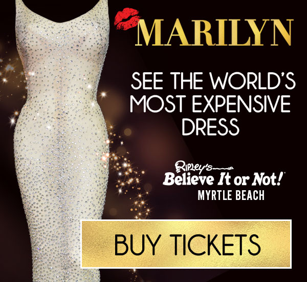 See the World's Most Expensive Dress!