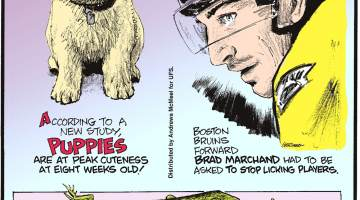 According to a new study, puppies are at peak cuteness at eight weeks old!-------------------- Boston Bruins forward Brad Marchand had to be asked to stop licking players.-------------------- The muscles, bones and even the tongues of green-blooded skinks are lime-green!