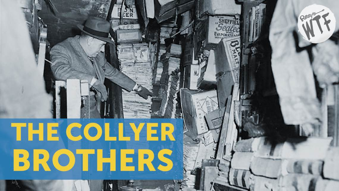 collyer brothers hoarders