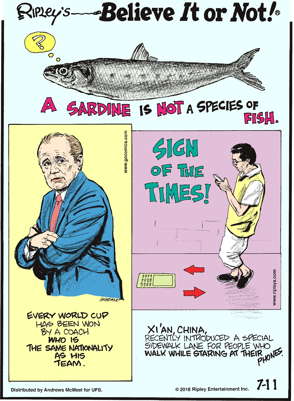 A sardine is not a species of fish.-------------------- Every World Cup has been won by a coach who is the same nationality as his team.-------------------- Xi'an, China, recently introduced a special sidewalk lane for people who walk while staring at their phones.