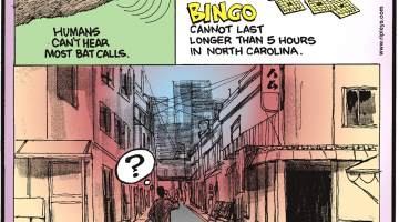 Humans can't hear most bat calls.-------------------- Bingo cannot last longer than 5 hours in North Carolina.-------------------- Most streets in Japan have no name!