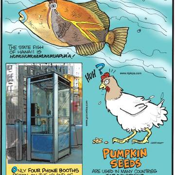 The state fish of Hawaii is humuhumunukunukuapua'a!-------------------- Only four phone booths remain on the island of Manhattan - they are all free!-------------------- Pumpkin seeds are used in many countries for deworming livestock, poultry and even ostriches!