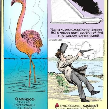 "1. Flamingos can live comfortably in lakes that are toxic enough to burn human skin. 2. The U.S. Air Force spent $10,000 on a toilet seat cover for the C-5 Galaxy cargo plane. 3. A disappearing sandbar in the Mississippi River known as ""Bloody Island"" was once a popular location for duels."