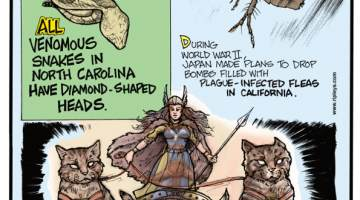 1. All venomous snakes in North Carolina have diamond-shaped heads. 2. During World War II, Japan made plans to drop bombs filled with plague-infected fleas in California. 3. In Norse mythology, Freyja's chariot is pulled by cats!