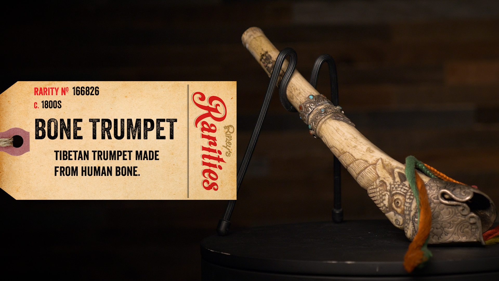 A Bone Trumpet Made For Calling Demons