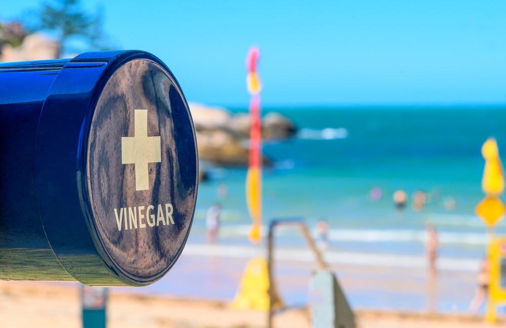 beach vinegar for jellyfish stings