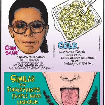 1. Chamoy Thipyaso of Thailand was sentenced to 141,078 years in jail for running a pyramid scheme. 2. Cold, leftover pasta produces less blood glucose than fresh, hot pasta. 3. Similar to fingerprints, people have unique tongue prints.