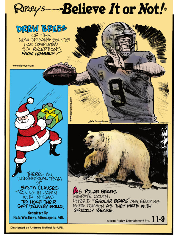 "1. Drew Brees of the New Orleans Saints has completed six receptions from himself! 2. There's an international team of Santa Clauses training in Japan with ninjas to hone their gift delivery skills. Submitted by Nate Westbury, Minneapolis, MN. 3. As polar bears migrate south, hybrid ""grolar bears"" are becoming more common as they mate with grizzly bears."