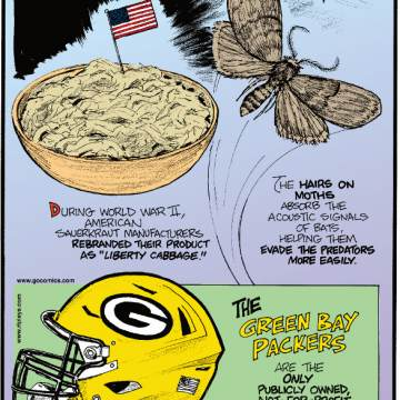 """1. During World War II, American sauerkraut manufacturers rebranded their product as """"liberty cabbage."""" 2. The hairs on moths absorb the acoustic signals of bats, helping them evade the predators more easily. 3. The Green Bay Packers are the only publicly owned, not-for-profit team in the NFL."""