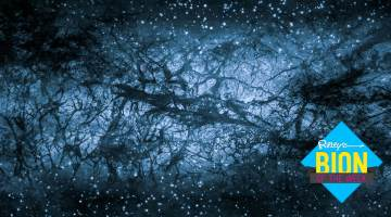 dark matter hurricane