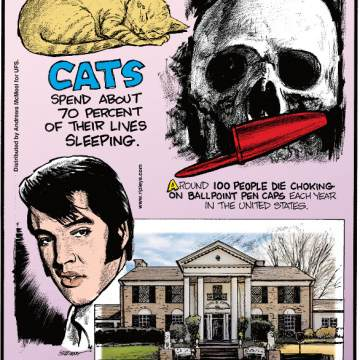 1. Cats spend about 70 percent of their lives sleeping. 2. Around 100 people die choking on ballpoint pen caps each year in the United States. 3. After the White House, Elvis Presley's Graceland is the most visited home in the United States.