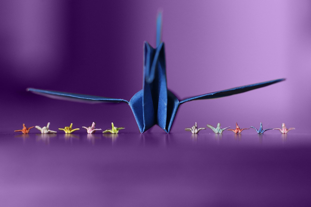 What are the dimensions of origami cranes from Graceincrease ... | 667x1000