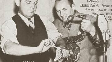 snake pit ripley thumb