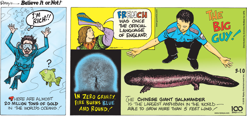 1. There are almost 20 million tons of gold in the world's oceans! 2. French was once the official language of England. 3. In zero gravity, fire burns blue and round! 4. The Chinese giant salamander is the largest amphibian in the world - able to grow more than 5 feet long!