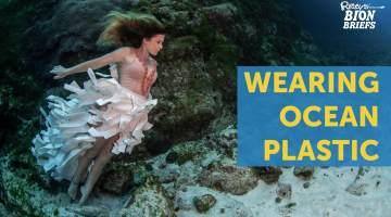 ocean plastic dresses