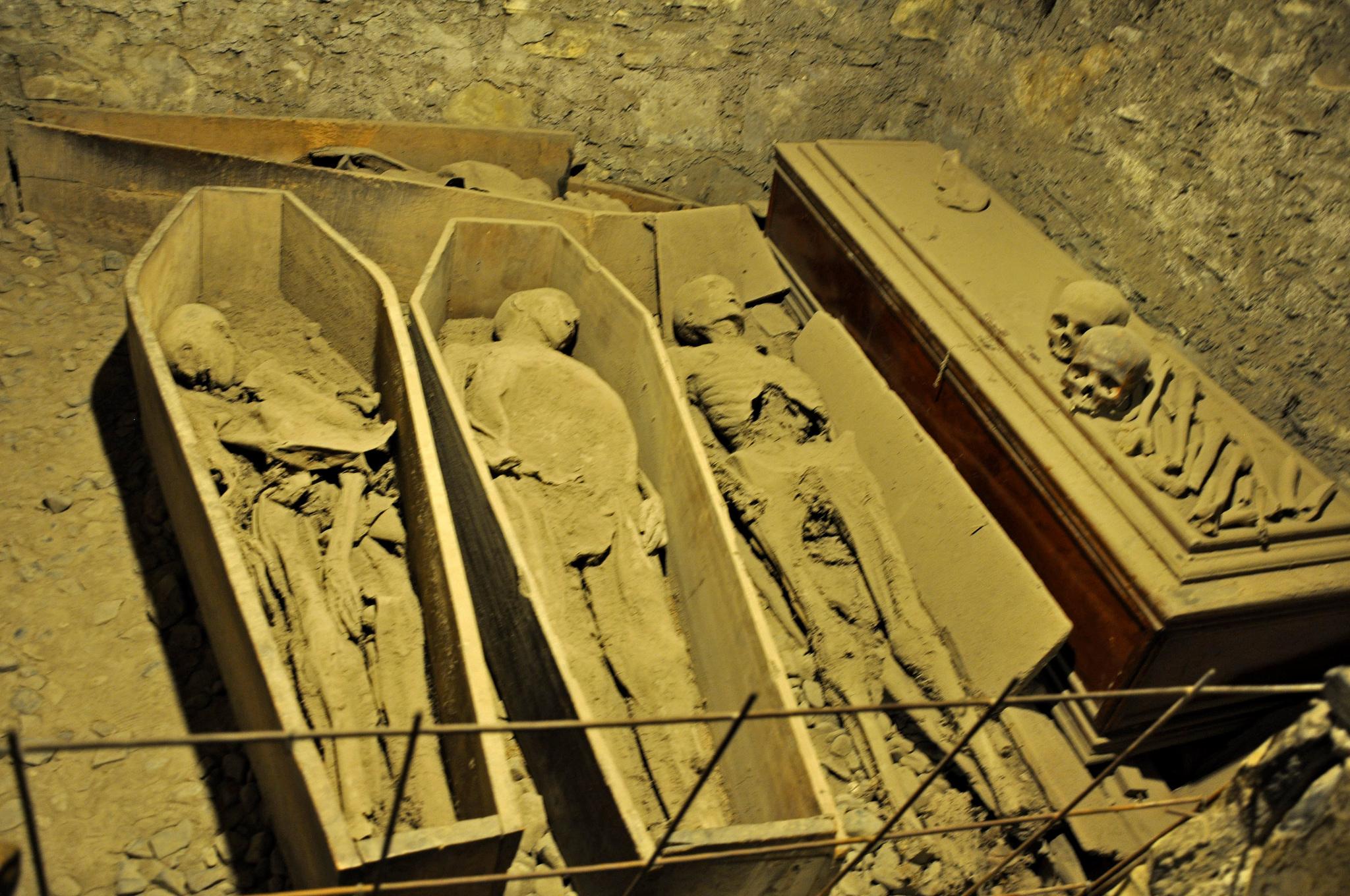 the crusader mummy
