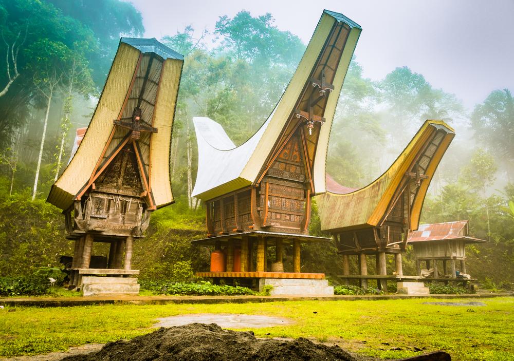 The Walking Dead of Tana Toraja