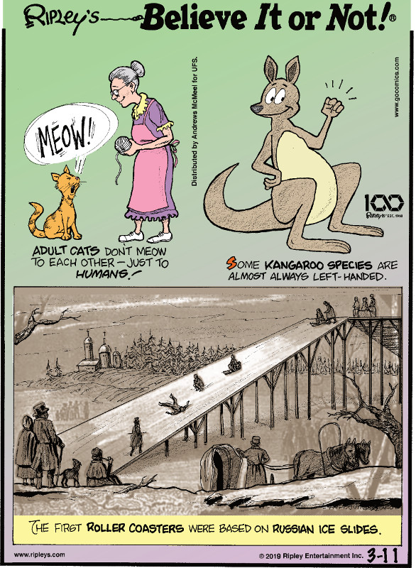 1. Adult cats don't meow to each other - just to humans. 2. Some kangaroo species are almost always left-handed. 3. The first roller coasters were based on Russian ice slides.