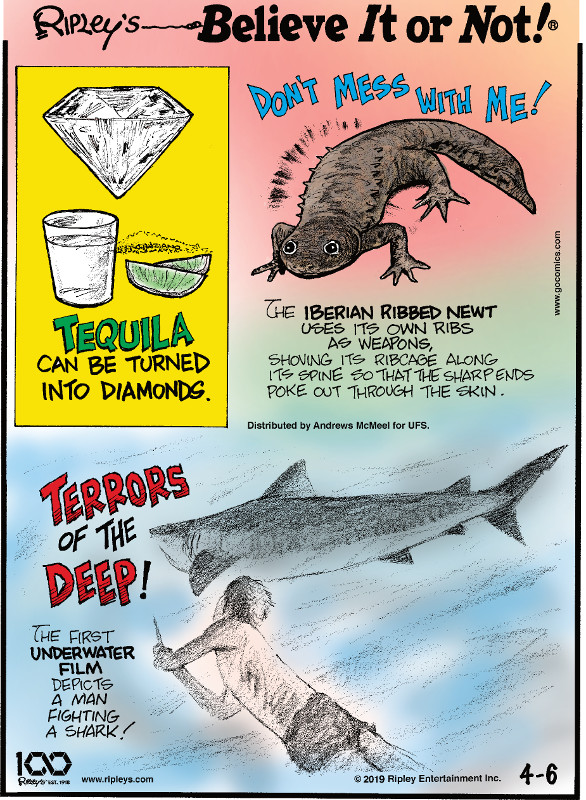 1. Tequila can be turned into diamonds. 2. The Iberian ribbed newt uses its own ribs as weapons, shoving its ribcage along its spine so that the sharp ends poke out through the skin. 3. Terrors of the deep! The first underwater film depicts a man fighting a shark!
