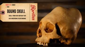 bound skull