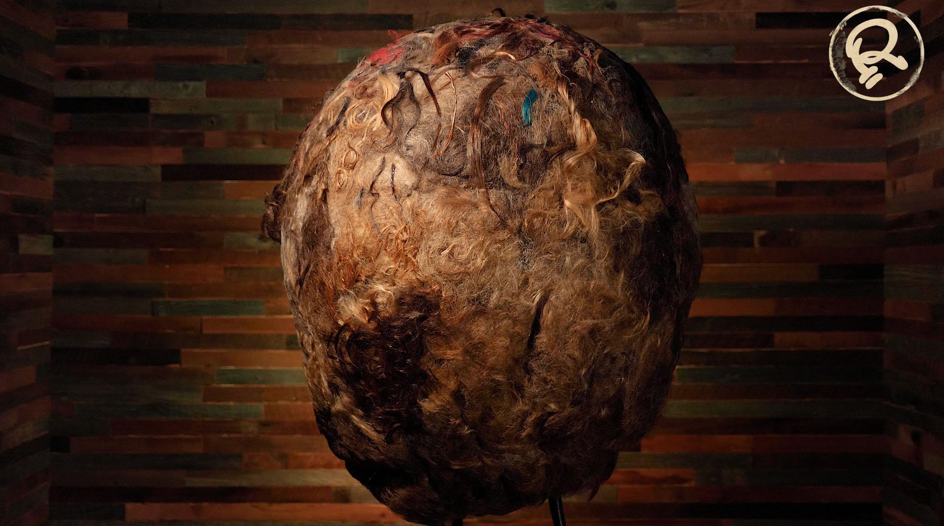 human hair ball