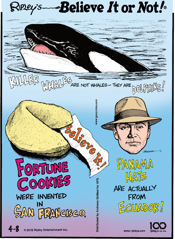 1. Killer whales are not whales - they are dolphins! 2. Fortune cookies were invented in San Francisco. 3. Panama hats are actually from Ecuador!