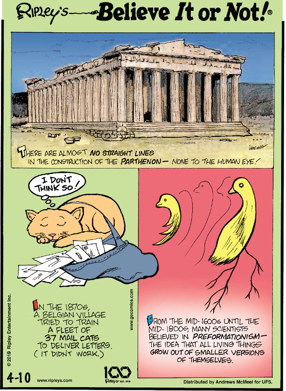 1. There are almost no straight lines in the construction of the Parthenon - none to the human eye! 2. In the 1870s, a Belgian village tried to train a fleet of 37 mail cats to deliver letters. (It didn't work.) 3. From the mid-1600s until the mid-1800s, many scientists believed in preformationism - the idea that all living things grow out of smaller versions of themselves.
