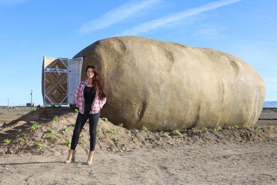giant potato