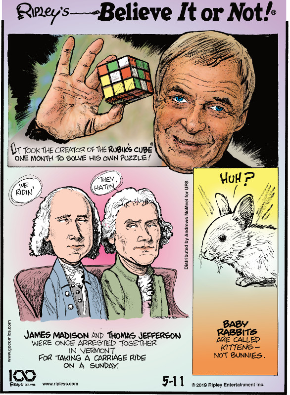 1. It took the creator of the Rubik's Cube® one month to solve his own puzzle! 2. James Madison and Thomas Jefferson were once arrested together in Vermont for taking a carriage ride on a Sunday. 3. Baby rabbits are called kittens - not bunnies.
