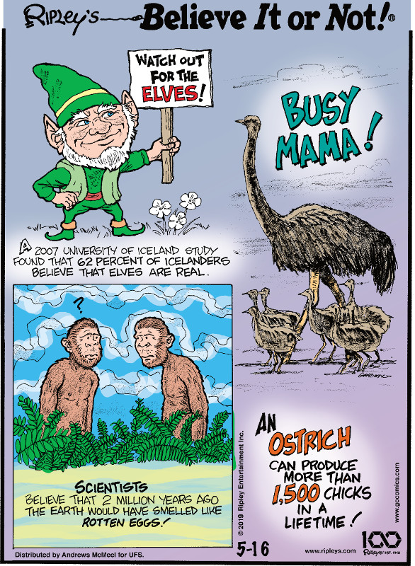 1. A 2007 University of Iceland study found that 62 percent of Icelanders believe that elves are real. 2. Scientists believe that 2 million years ago the earth would have smelled like rotten eggs! 3. An ostrich can produce more than 1,500 chicks in a lifetime!