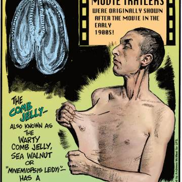 """1. Movie trailers were originally shown after the movie the early 1900s! 2. The comb jelly - also known as the warty comb jelly, sea walnut or """"mnemiopsis leidyi"""" - has a disappearing anus! 3. With a rare medical condition called Ehlers-Danlos Syndrome, Garry Turner can pull the skin of his stomach 6.22 inches away from his body!"""